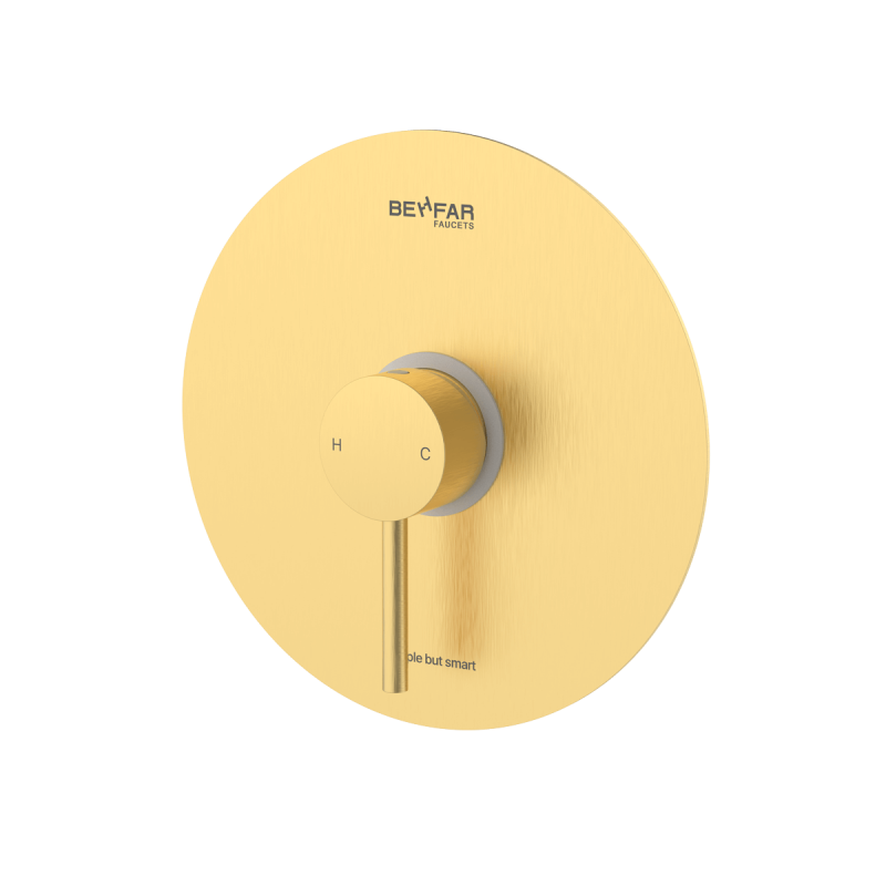 behfar brushed gold toilet concealed with ibox plate c