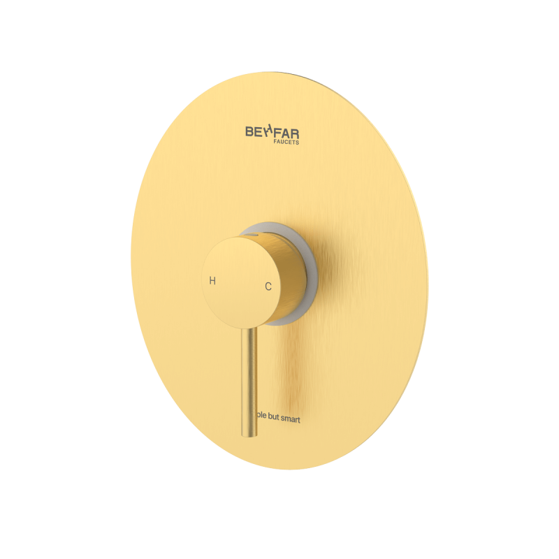 behfar brushed gold toilet concealed with ibox plate d