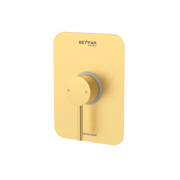 behfar brushed gold toilet concealed with ibox plate a