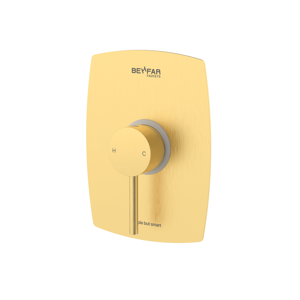behfar brushed gold toilet concealed with ibox plate b