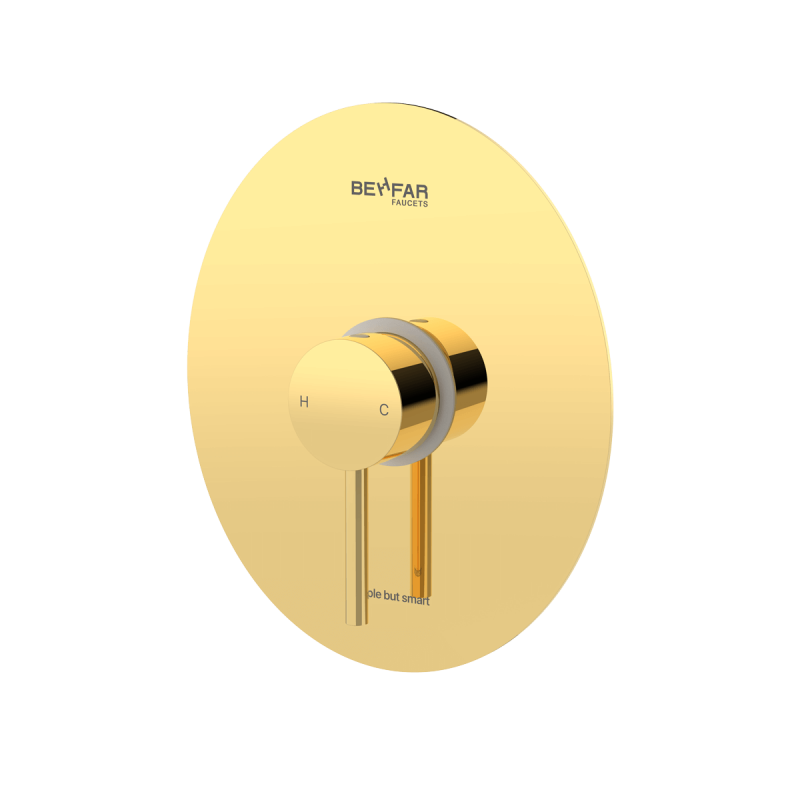 behfar shiny gold toilet concealed with ibox plate d