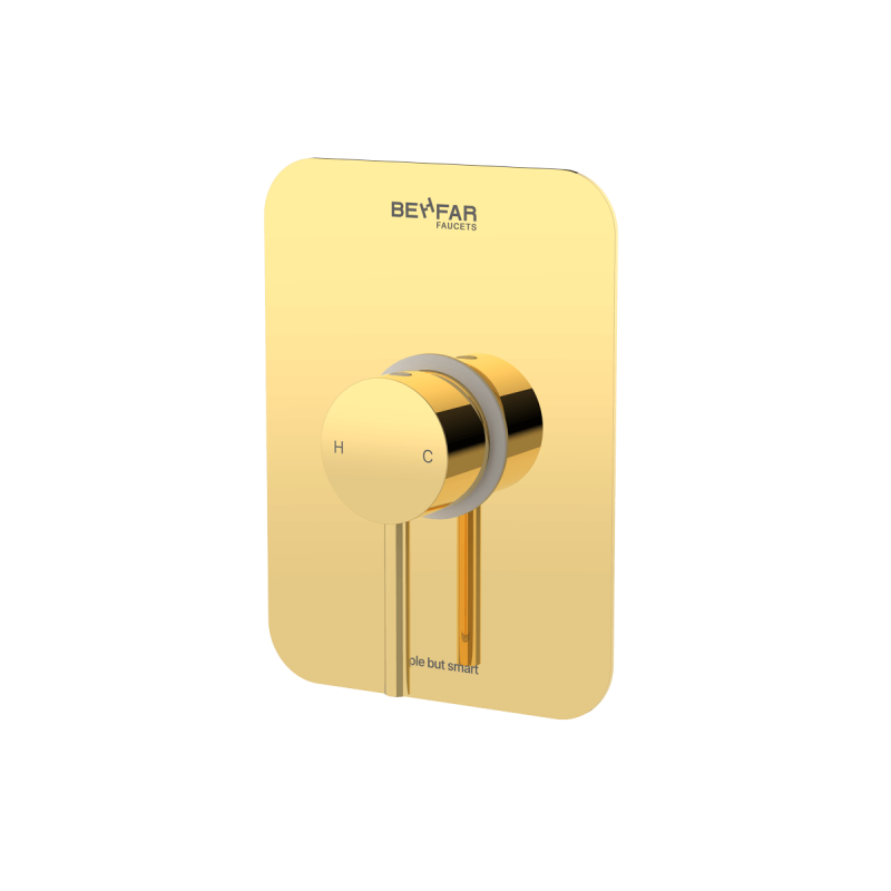 behfar shiny gold toilet concealed with ibox plate a