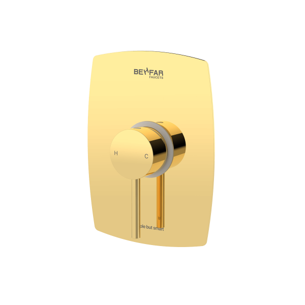 toilet shiny gold concealed with ibox plate b